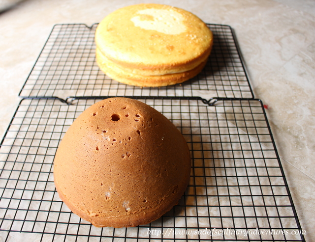 Two nine inch round layers and cake using Wonder Mold